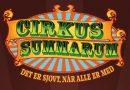 Cirkus for hele familien på tegnsprog – Søndag d. 22. juli kl. 11.00 på Tangkrogen i Aarhus. læs mere